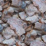 Wooden shards old bark seamless texture background. Shards old bark seamless texture background Stock Image