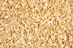 Wooden shavings background Royalty Free Stock Photography