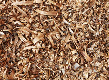 Wooden shavings background pattern Royalty Free Stock Photography