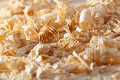 Wooden shavings closeup Royalty Free Stock Photography
