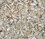 Wooden shavings texture background Stock Images