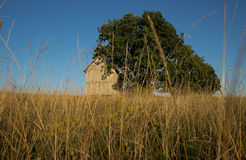 Wooden Shed on Grass Field Royalty Free Stock Photography
