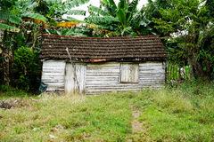 Wooden shed, house or Shack Royalty Free Stock Photo