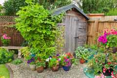 Wooden shed surrounded by potted plants Stock Photos