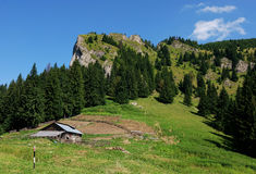 Wooden sheepfold in mountains royalty free stock photography
