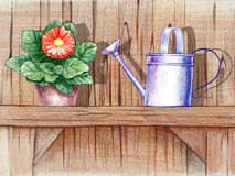 Wooden shelf with flower pot Royalty Free Stock Image