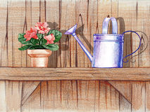 Wooden shelf with flower pot Royalty Free Stock Photos