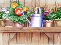 Wooden shelf with flower pots Stock Photography