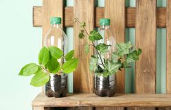 Wooden shelf with plastic bottles used as container. S for growing plants Royalty Free Stock Images