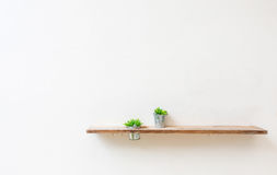 Wooden shelf on white wall with green plant. Stock Images