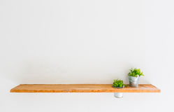 Wooden shelf on white wall with green plant. Stock Photos