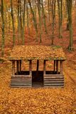 Wooden shelter autumn forest Stock Photography