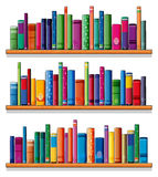 Wooden shelves with books. Illustration of the wooden shelves with books on a white background Royalty Free Stock Photography