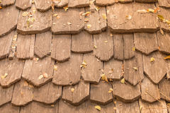 Wooden shingle on the roof. Detail of protective wooden shingle on the roof Stock Photography