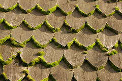 Wooden shingles Royalty Free Stock Photography