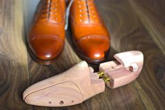 Cedar shoetree. Wooden shoetree for men`s shoes and brown oxford shoes Stock Photo