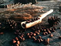 Wooden shovel cooking woodwork. Wood woodwork shovel Cooking forest outdoor cones kitchen pine nuts stock photo