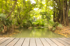 Wooden sidewalk with blur of forest and rill. Background Stock Photos