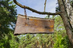 A wooden sign on the chains hangs on a tree branch. Place for text royalty free stock photography