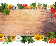 Wooden sign & flowers Stock Image