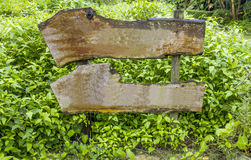 Wooden sign in forest background. Stock Photo