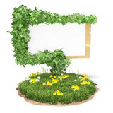 Wooden sign on the grass with ivy Stock Images