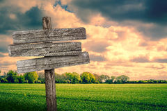 Wooden sign on a green field. Worn wooden sign on a fresh green meadow Royalty Free Stock Image