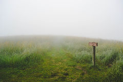 Wooden sign in green grassland Stock Photography