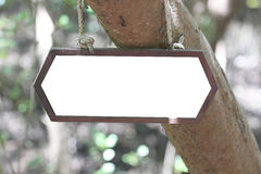 Wooden sign hanging on tree. Royalty Free Stock Photography