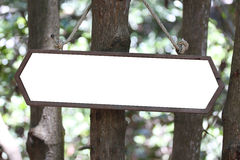 Wooden sign hanging on tree. Royalty Free Stock Photo