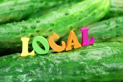 Wooden Sign Local On Fresh Home Grown Cucumbers Royalty Free Stock Photos
