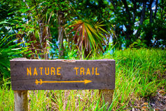 Wooden sign in nature Stock Images