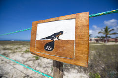 Wooden sign protecting a closed nesting area, Galapagos Stock Photography