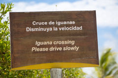 Wooden sign protecting a closed nesting area, Galapagos Royalty Free Stock Photo