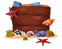 Wooden sign with seashells and starfish in background. Illustration Stock Photos