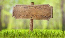 Wooden sign in summer forest grass. Wooden sign in summer forest, park or garden Royalty Free Stock Photography