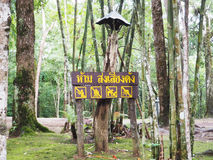 Wooden sign in Thai Language mean `Do not make loud noises ` Stock Images