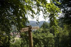 Wooden sign in the woods on a sunny summer day stock photos