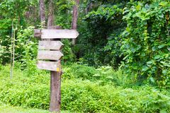 Wooden signage in the forest Royalty Free Stock Photography