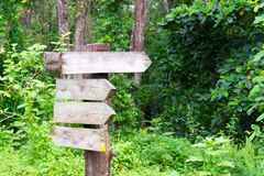 Wooden signage in the forest Royalty Free Stock Photo