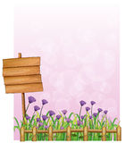 A wooden signboard in the garden with lavender flowers Royalty Free Stock Images
