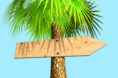 Wooden signboard on a palm tree Royalty Free Stock Photos