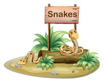 A wooden signboard with snakes Royalty Free Stock Images