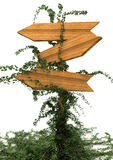 Wooden signpost. 3d wooden signpost cover with ivy isolated on white Stock Images