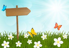 Wooden signpost on green meadow Stock Image