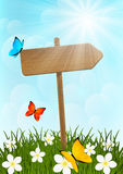 Wooden signpost on green meadow Stock Photo