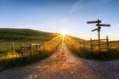 Wooden signpost near a path. And sunrays royalty free stock image