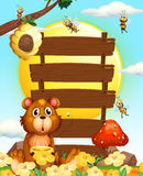 Wooden signs with bear and bees Royalty Free Stock Photo