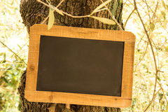 Wooden slate Royalty Free Stock Photo