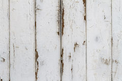 Wooden Slats Background with exfoliating White Gloss Paint. Closeup of a white gloss painted weathered shabby barn door background royalty free stock photo
